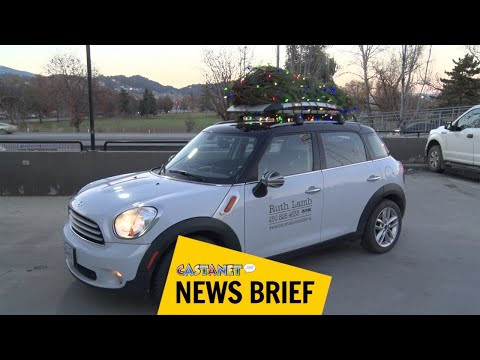 Kelowna woman raising money through 'Mini Christmas tree' fundraiser –