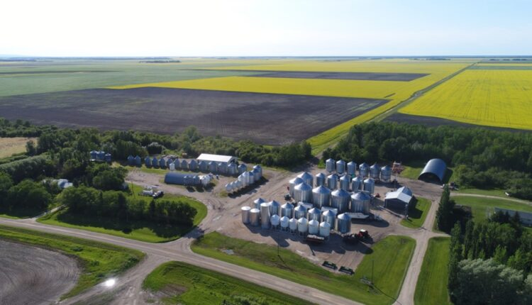 Manitoba's most-read stories of 2020